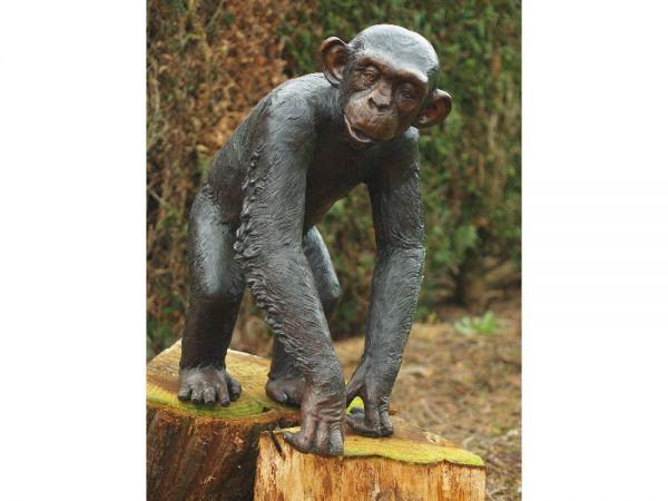 Bronzefigur Schimpanse