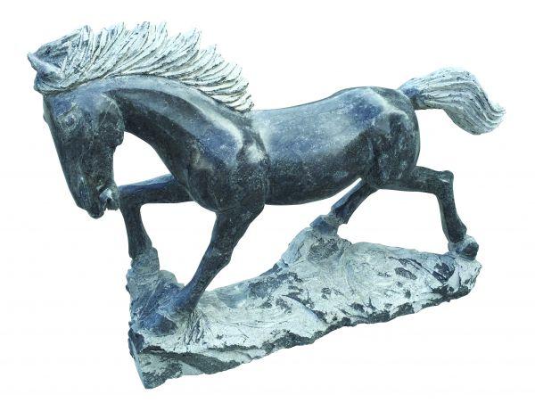 Limestone Pferd laufend