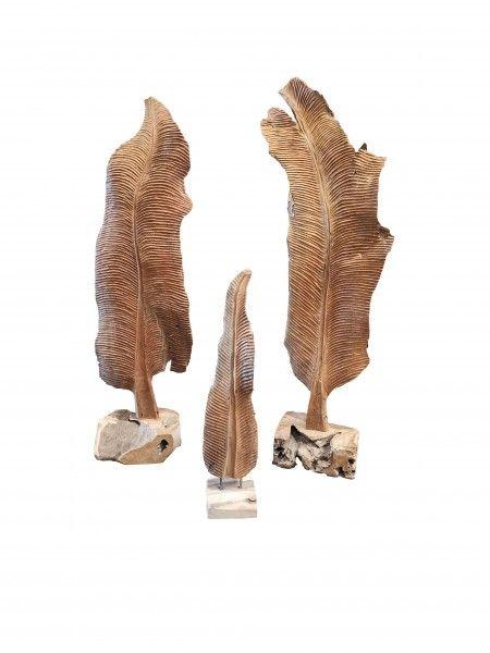 Teakholz Farn H ca. 110-130 cm