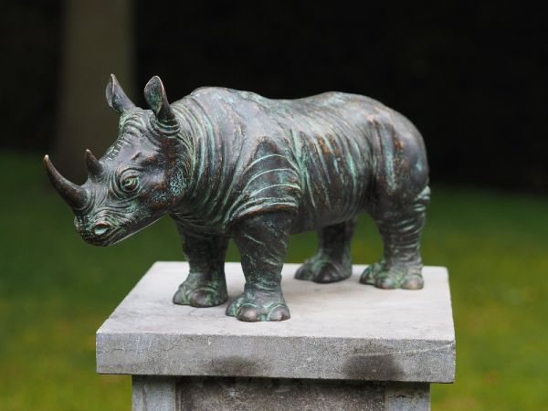 Bronzefigur Rhino