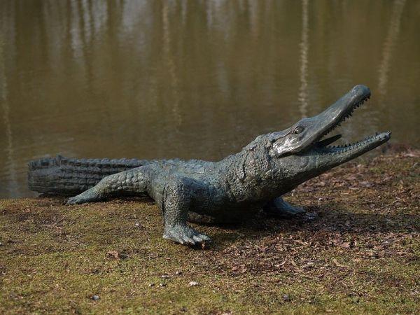 Bronzefigur Krokodil