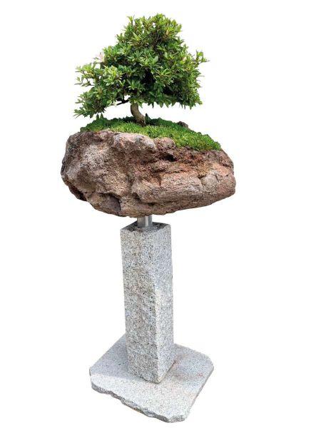 Bonsai-Minigarten Kategorie 2 Granitpalisade von Naturstein Geukes